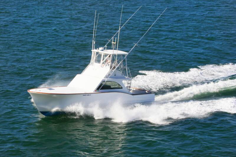 Tightlines fishing charters the best fishing team in the for Longboat key fishing charters